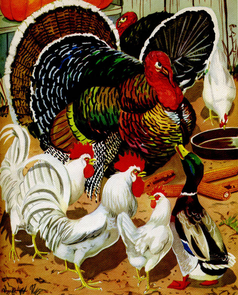 Thanksgiving barnyard
