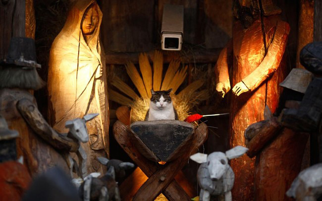 Inappropriate nativity scene #2