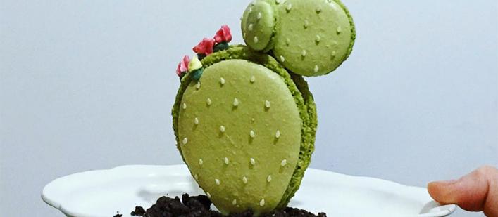 Cactus-macaron-by-Ayako-Kurokawa-featured