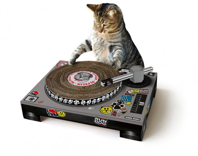 Cat dj scratcher