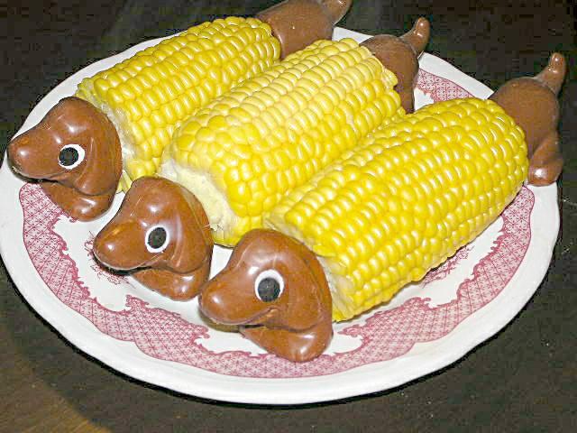 Corn on the Cob with dachshun