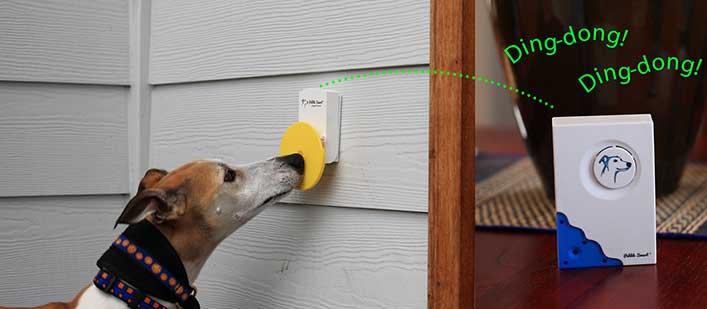 doggie-doorbell-featured