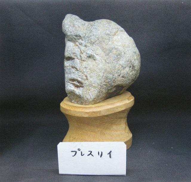 elvis-presley-rock