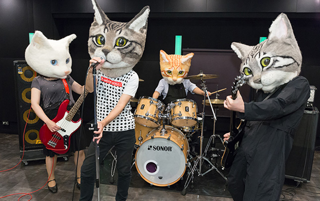 Giant-Cat-Head-band