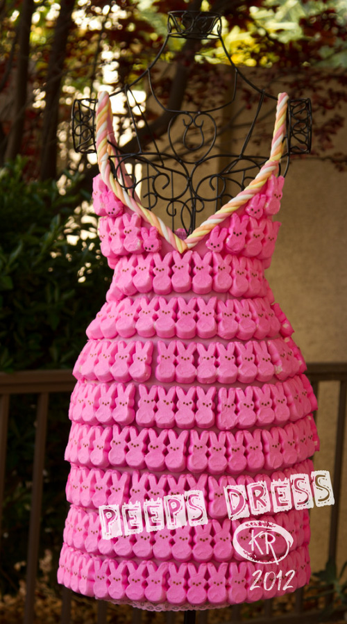 Kimberly Reinhart Peeps Dress