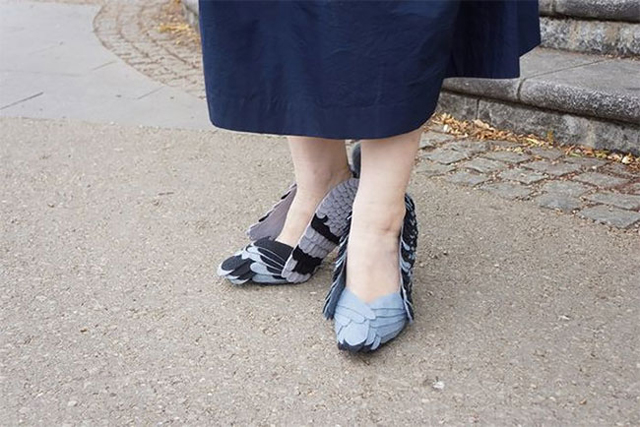 Pigeon-Shoes-1