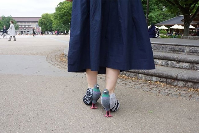 Pigeon-Shoes-2