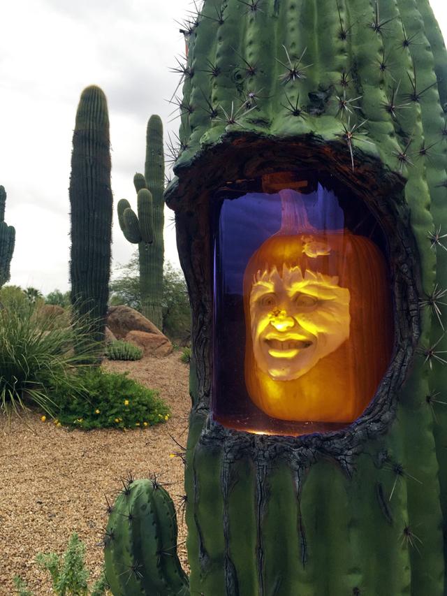 Ray-Villafane-cacti
