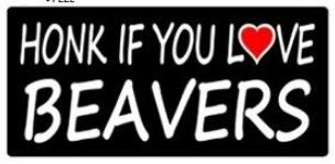 Honk if you love beavers!!