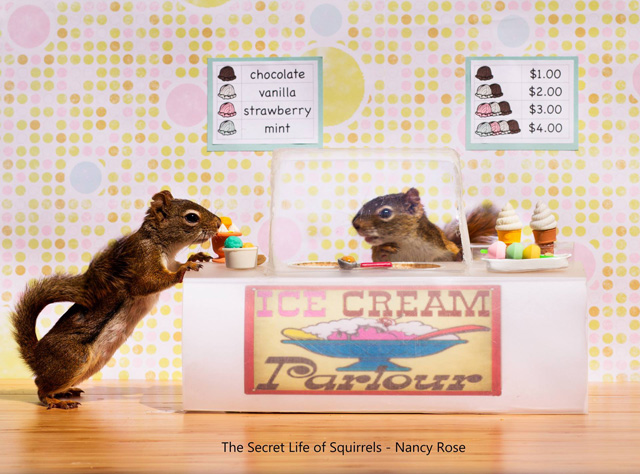 Secret-Life-of-Squirrels-ice-cream