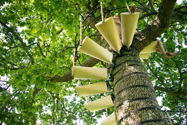 canopy-stair-thor-ter-kulve-robert-mcintyre-7.jpg.650x0_q70_crop-smart