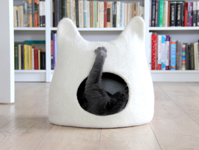 cat-igloo