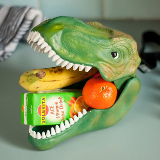 dino-case-lunch-box