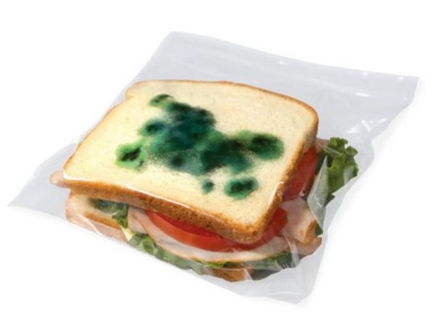 moldy-sandwich-bag