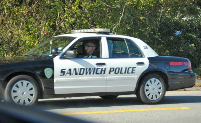 sandwich-police-car