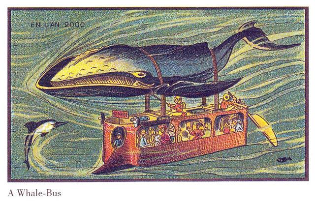 whale-bus